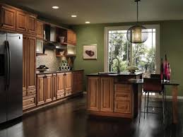 decora cabinets home depot furniture modern kitchen design by fantastic decora cabinets ideas