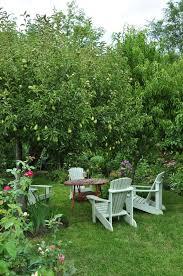 Backyard Fruit Trees Best 25 Orchards Ideas On Pinterest Planting Fruit Trees Apple