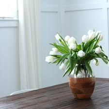 Plants Of Season 4 Joanna by How To Incorporate Chip And Joanna U0027s Fixer Upper Style Into Your Home