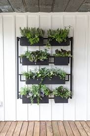 awesome hanging wall planters south africa pamela crawford living