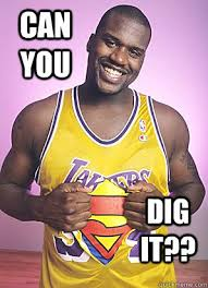 Can You Dig It Meme - can you dig it shaq did it quickmeme