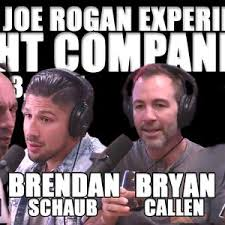 Joe Rogan Meme - fight companion june 3 2017 by the joe rogan experience mixcloud
