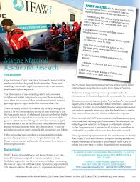 marine mammal rescue and research fact sheet ifaw
