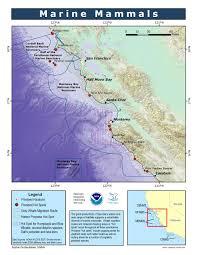 Map Of Cambria Ca Marine Mammals Simon