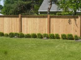 landscaping ideas for backyard privacy cont back house facing