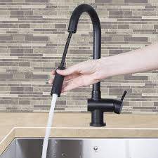 refreshing figure n i black kitchen faucet trinsic single