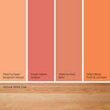 download peachy orange paint color slucasdesigns com