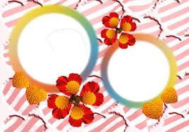 frame flower png my blog