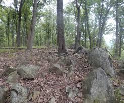 100 christmas tree farm for sale boone nc baxter mountain