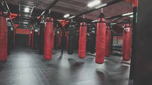 fitness u0026 training mma la mirada ufc gym