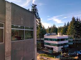 file view of microsoft campus from building 36 jpg wikimedia commons