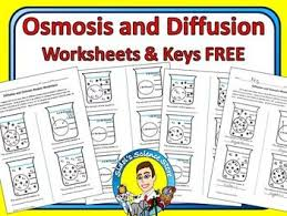 96 best diffusion osmosis images on pinterest biology cell