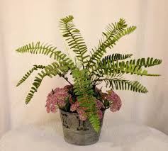 woodland fern and queen anne u0027s lace in tin pot lavender and green