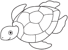 sea turtle coloring pages ijigen me