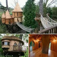 Photos Of Tiny Houses Popsugar by 106 Best Tree Abodes Images On Pinterest The Tree Armchair And Home
