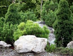 small rock garden stock photo image 14910660