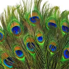 Feather Home Decor Peacock Feather Home Decor Promotion Shop For Promotional Peacock
