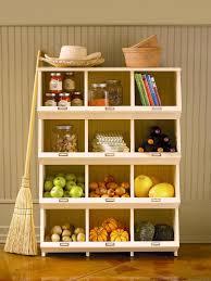Organization In The Kitchen - pantries for an organized kitchen diy