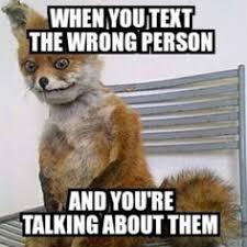 Stoned Fox Meme - top 10 funniest stoned fox memes humor pinterest memes humor