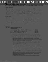 Example Of Finance Resume by Examples Of Career Overviews For Resume Free Resume Example And