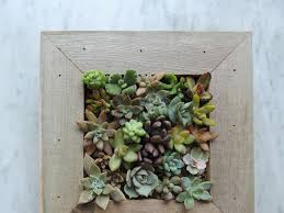 new succulent planter uncommon goods k sarah designs