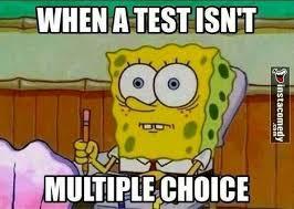 Spongebob Funny Meme - ideas about spongebob memes on pinterest spongebob funny fit