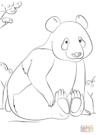 download coloring pages panda coloring page panda coloring page