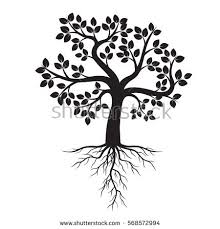 black tree roots vector illustration stock vector 568572994