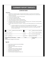template for summary report summary report template