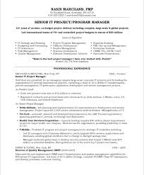 senior it project progra manager resume professional experience