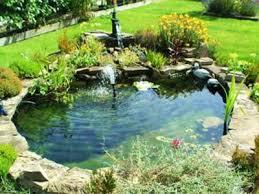 Small Backyard Fish Pond Ideas Best 25 Small Backyard Ponds Ideas On Pinterest Small Fish Pond