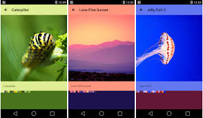 color themes for android lollipop features xamarin