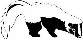 black white skunk coloring color luna