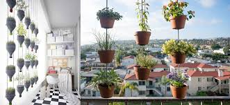 balcony vegetable garden ideas for apartments indroyal properties