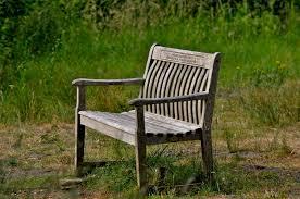 file park bench lackford lakes suffolk england 30july2010 jpg