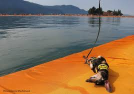 Floating Piers by Bicontinental Dachshund The Floating Piers Unplugged Enjoy