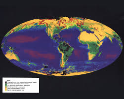 World Map Image by World Online Vegetation And Plant Distribution Maps Library