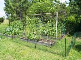 Vegetable Garden In Winter by Gardening In Winter Garden Spring 2014 Vegetable Garden