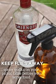 How To Get Rid Of Mosquitoes In Backyard by Best 25 Keep Flies Away Ideas On Pinterest Backyard Camping