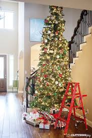 ideas 12 foot tree top 25 best on