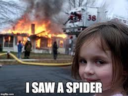 I Saw A Spider Meme - i saw a spider meme