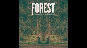 Seeking Episode 3 Song Forest Songs For A Seeking Soul Demo