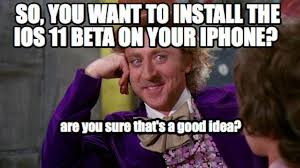 Beta Meme - so you want to install ios 11 beta on your main iphone apple must