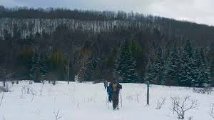 winter end to end forks of the credit caledon bruce