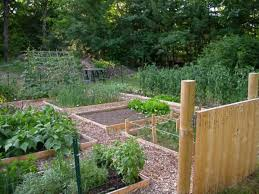 raised beds who has a cool design vegetable gardener