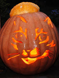 22 traditional pumpkin carving ideas pumpkin carvings and
