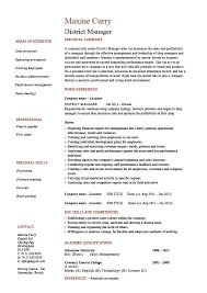 manager resumes examples technical manager resume example