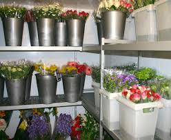 chambre froide fleuriste casaflor com chambre climatique pour fleurs coupées équipement