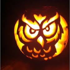 338 best pumpkin carving images on fall owl