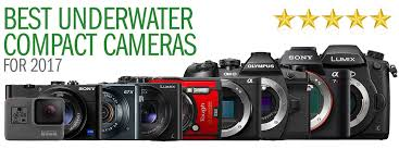 best digital camera for action shots and low light underwater photography backscatter